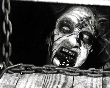 The Evil Dead Poster and Photo