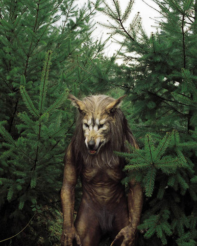 Dog Soldiers Poster and Photo