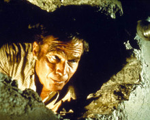 Charlton Heston in Earthquake Poster and Photo