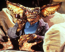 Gremlins 2 : The New Batch Poster and Photo