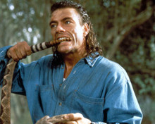 Jean-Claude Van Damme in Hard Target Poster and Photo