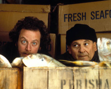 Joe Pesci & Daniel Stern in Home Alone 2: Lost in New York Poster and Photo