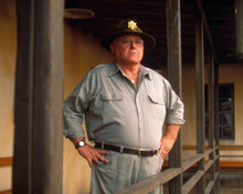 Rod Steiger in In Pursuit of Honor Poster and Photo