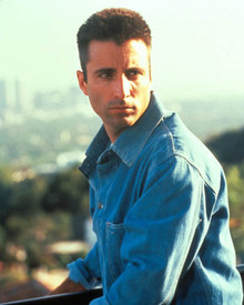 Andy Garcia in Internal Affairs Poster and Photo