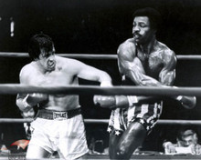 Sylvester Stallone & Carl Weathers in Rocky Poster and Photo