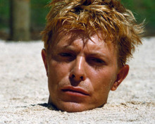 David Bowie in Merry Christmas, Mr Lawrence Poster and Photo