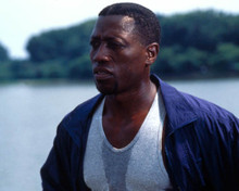 Wesley Snipes in Murder at 1600 Poster and Photo