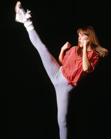 Hilary Swank in The Next Karate Kid Poster and Photo