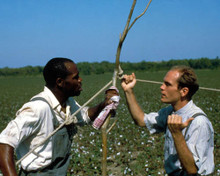 John Malkovich & Danny Glover in Places in the Heart Poster and Photo