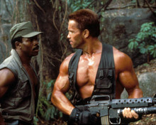 Arnold Schwarzenegger & Carl Weathers in Predator Poster and Photo