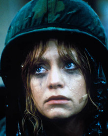 Goldie Hawn in Private Benjamin Poster and Photo