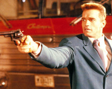 Arnold Schwarzenegger in Red Heat Poster and Photo