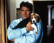 Harrison Ford in Regarding Henry Poster and Photo