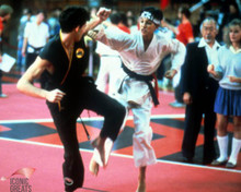 Ralph Macchio in The Karate Kid Poster and Photo
