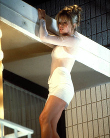 Kim Basinger in Cool World Poster and Photo