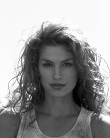 Cindy Crawford in Fair Game Poster and Photo