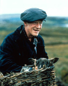 John Hurt in The Field Poster and Photo