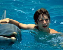Elijah Wood in Flipper Poster and Photo