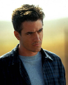 Dermot Mulroney in The Trigger Effect Poster and Photo