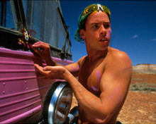Guy Pearce in The Adventures of Priscilla, Queen of the Desert Poster and Photo