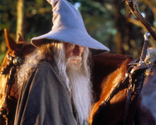 Ian McKellen in The Lord of the Rings:The Fellowship of the Ring a.k.a. Der Herr de ringe Poster and Photo