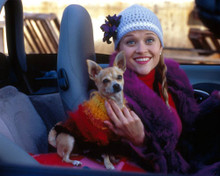 Reese Witherspoon in Legally Blonde Poster and Photo