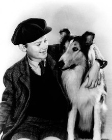 Roddy McDowall in Lassie Come Home Poster and Photo