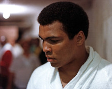 Muhammad Ali Poster and Photo