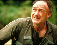 Gene Hackman in Bat*21 Poster and Photo