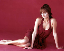 Jacqueline Bisset in The Grasshopper Poster and Photo