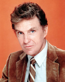 Robert Stack Poster and Photo