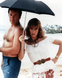 Robert Wagner & Stefanie Powers in Hart to Hart Poster and Photo