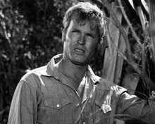 Ty Hardin aka Ty Hungerford in Riptide Poster and Photo