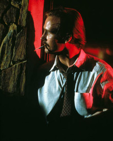 William Hurt in Body Heat Poster and Photo