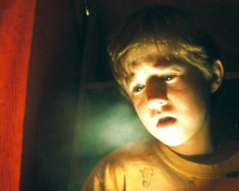 Haley Joel Osment in The Sixth Sense Poster and Photo