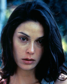 Teri Hatcher Poster and Photo