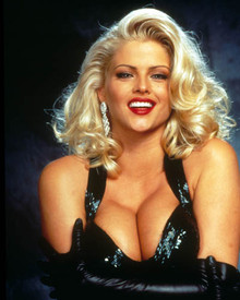 Anna Nicole Smith in Naked Gun 33 1/3 : The Final Insult Poster and Photo