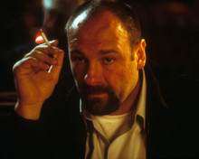 James Gandolfini in The Mexican Poster and Photo