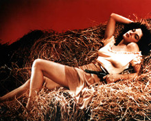 Jane Russell in The Outlaw Poster and Photo