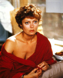 Susan Sarandon in The Buddy System Poster and Photo