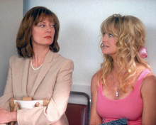 Susan Sarandon & Goldie Hawn in The Banger Sisters Poster and Photo