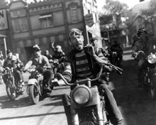 Lee Marvin in The Wild One Poster and Photo