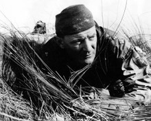 Trevor Howard in Cockleshell Heroes Poster and Photo