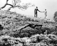 James Stewart & Jane Wyman in Magic Town Poster and Photo
