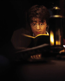 Daniel Radcliffe in Harry Potter and the Chamber of Secrets Poster and Photo