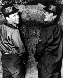 Frank Sinatra & Tony Curtis Poster and Photo