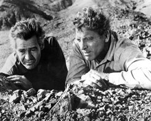 Robert Ryan & Burt Lancaster in The Professionals (1966) Poster and Photo