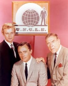 David McCallum & Robert Vaughn in The Man From U.N.C.L.E. Poster and Photo