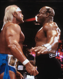 Terry 'Hulk' Hogan in No Holds Barred Poster and Photo
