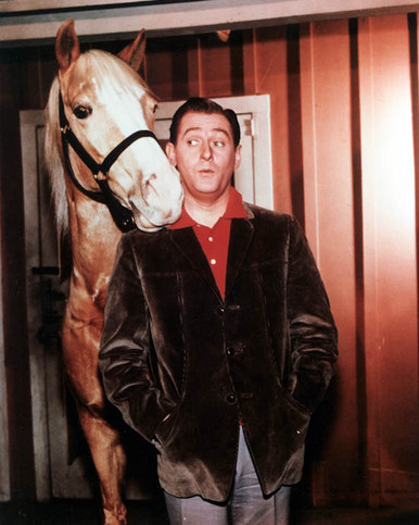 Mister Ed Poster and Photo